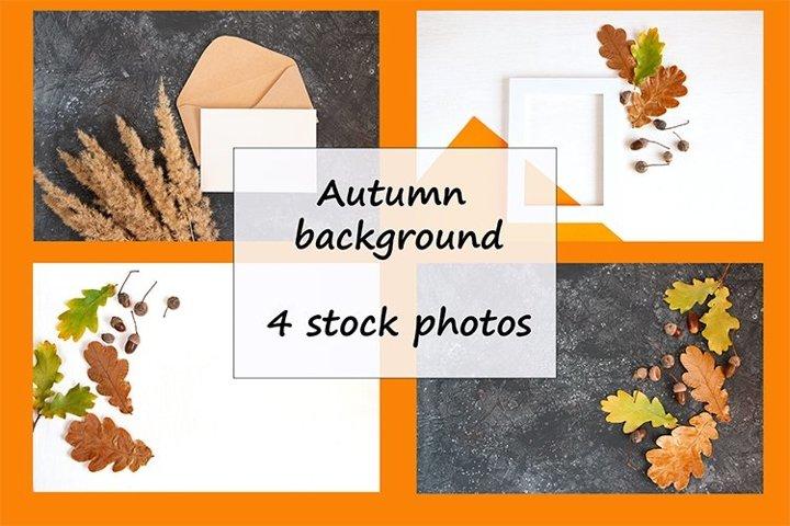 Autumn background 4 stock photos