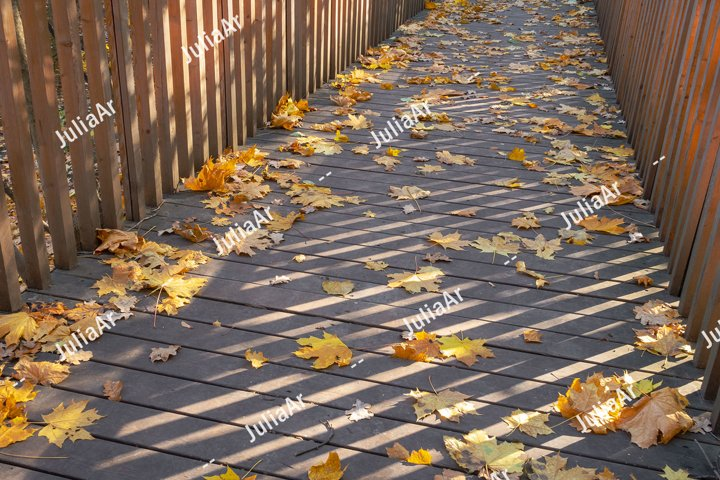 Wooden walk passage with autumn leaves