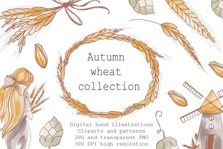 Cute kawaii set wheat, girl with grain, mill, frame