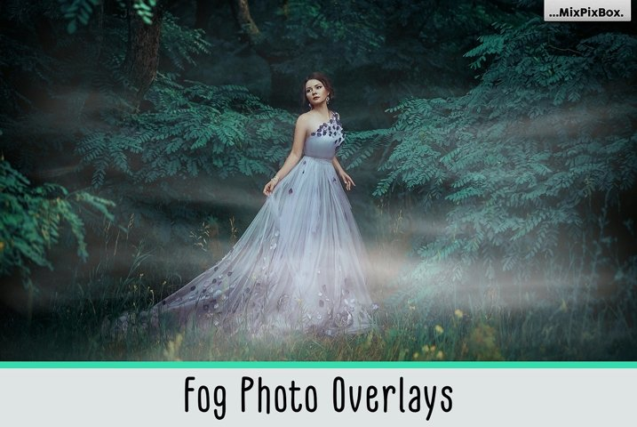 Fog Photo Overlays