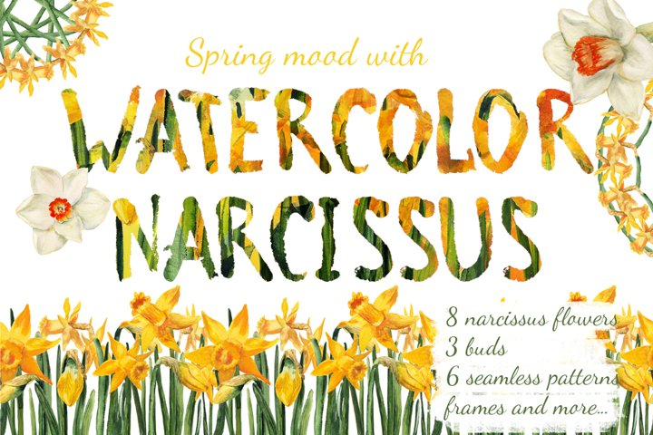 Watercolor narcissuses