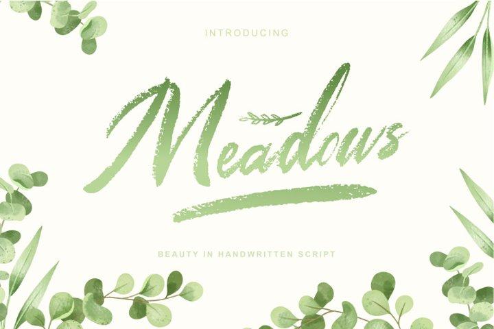 Meadows | Textured brush script font
