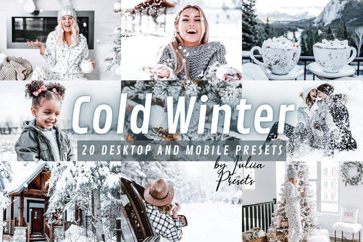20 Winter Lightroom Presets Mobile & Desktop COLD WINTER