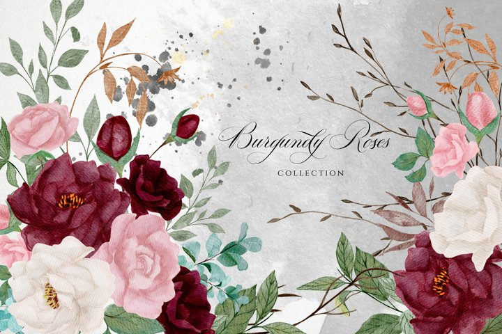 Burgundy Roses Watercolor Collection