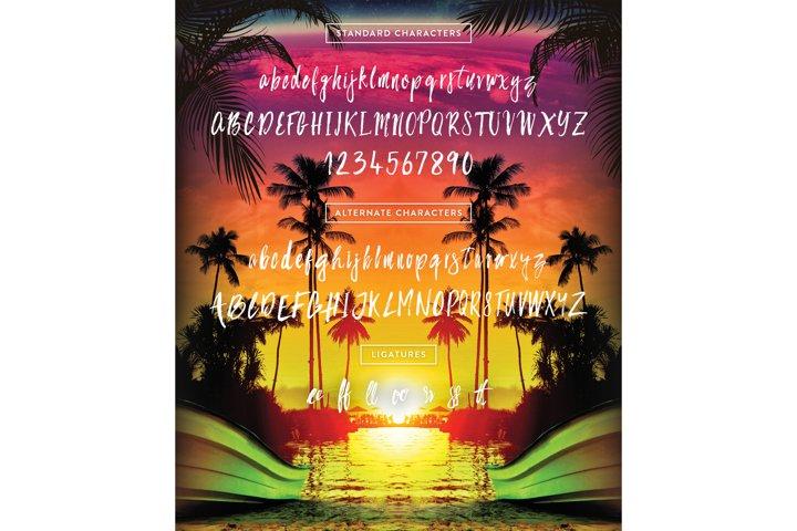 Bahamas Brush Font - Free Font of The Week Design0
