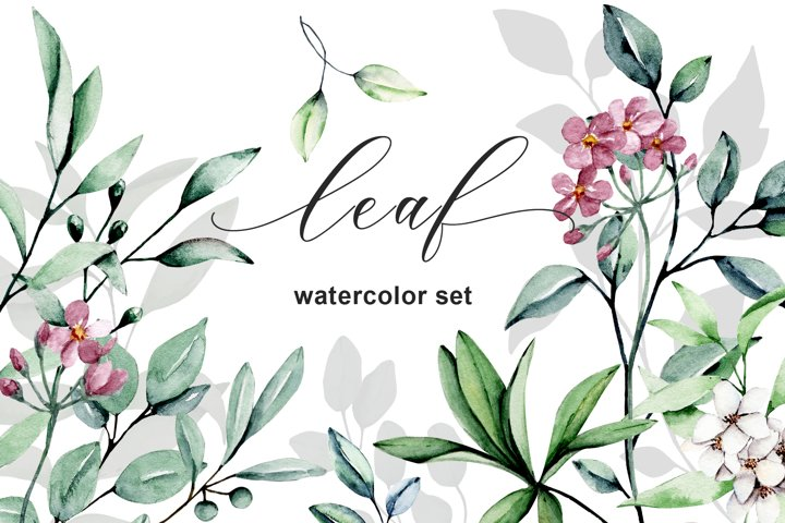 Leaves and flowers watercolor set. Hand painting