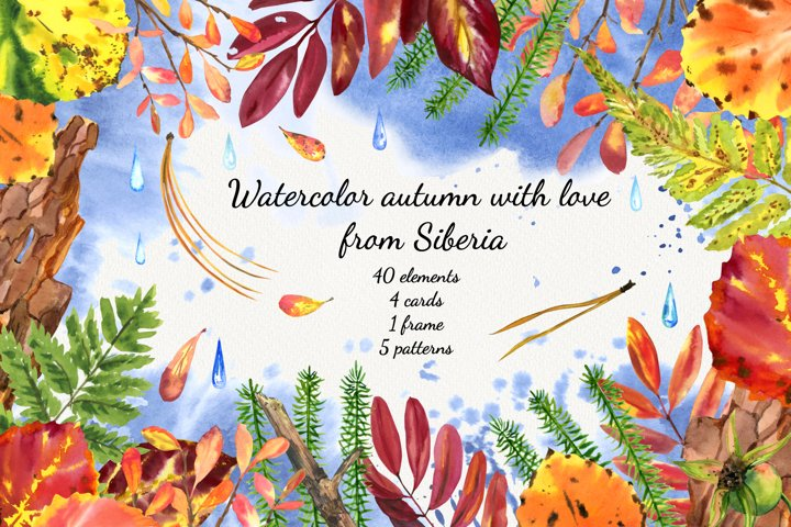 Autumn watercolor clipart and fallen leaves and taiga plants
