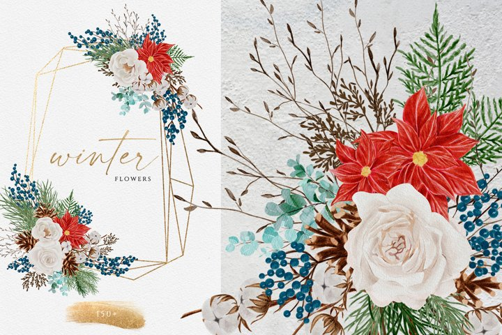 Winter Flower Watercolor Clipart