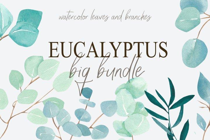 Eucalyptus bundle, watercolor eucalyptus clipart example