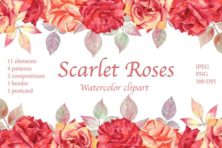 Scarlet Roses. Watercolor Clipart. JPEG, PNG.