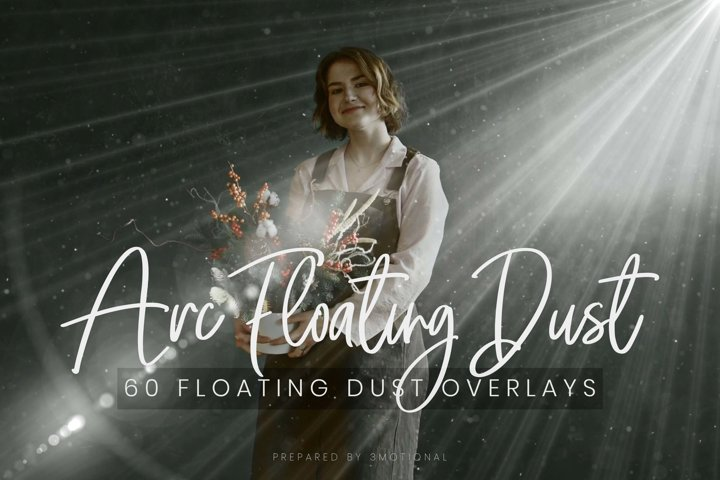 60 ARC Floating Dust Flare Effect Photo Overlays