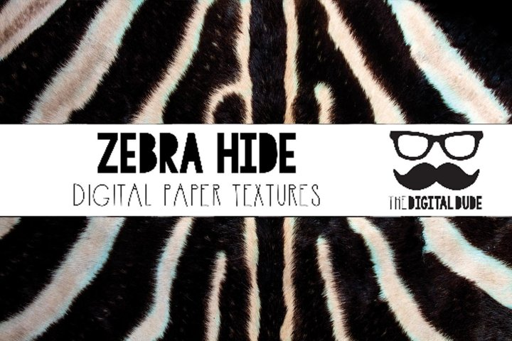Zebra Hide - Digital Paper Set of 12 Images