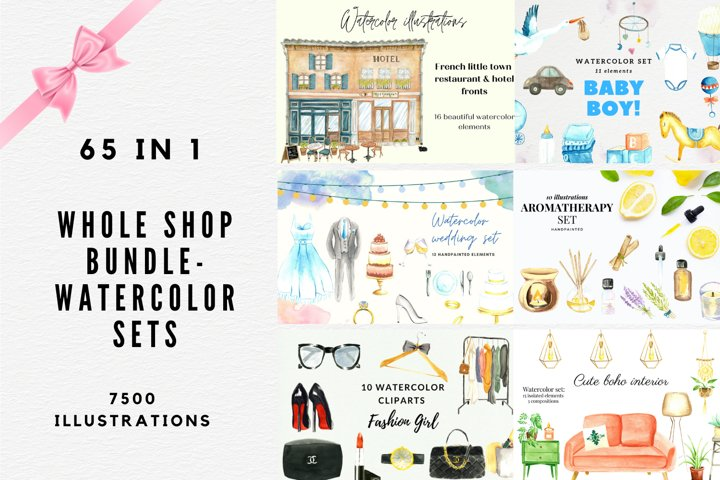 Whole Shop Watercolor Bundle, Watercolor Clipart Set