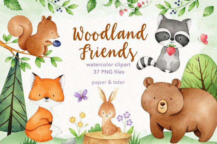Watercolor Woodland Animals Clipart Graphics