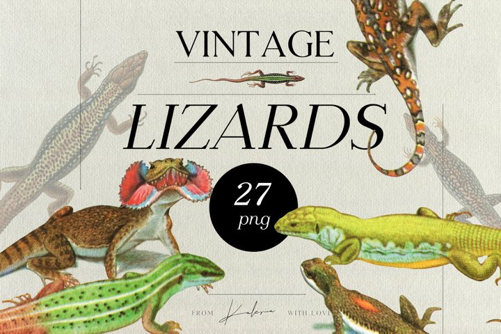 Vintage lizards - retro illustrations set