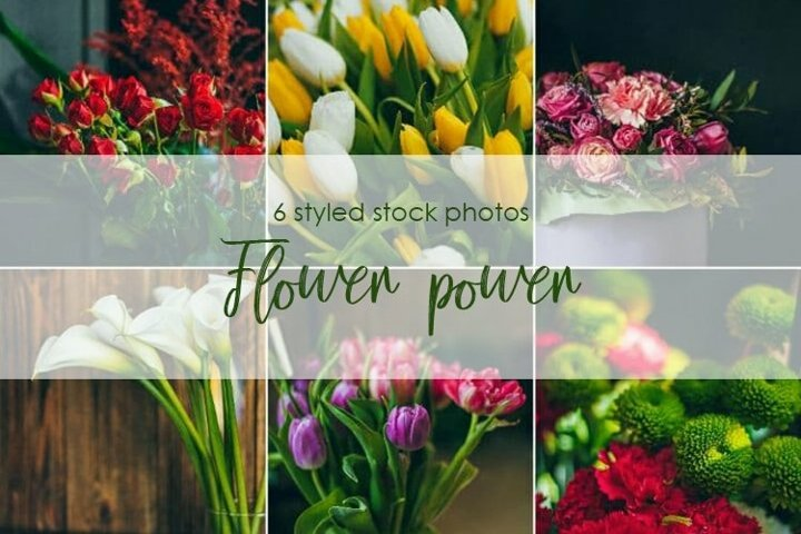 Flower power. Still life bouquets bundle