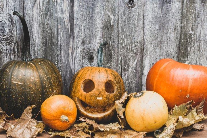 The main symbol of the holiday Happy Halloween