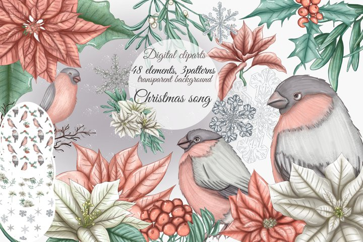 Christmas clipart winter birds, poinsettia flowers,snowflake