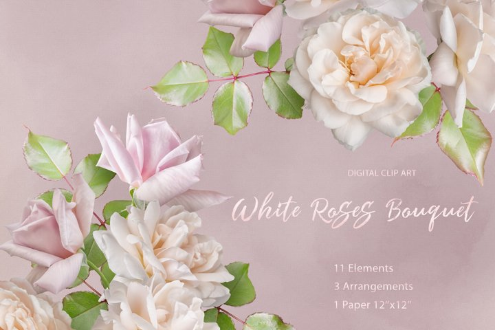 White roses clipart. Pink and white roses bouquets.