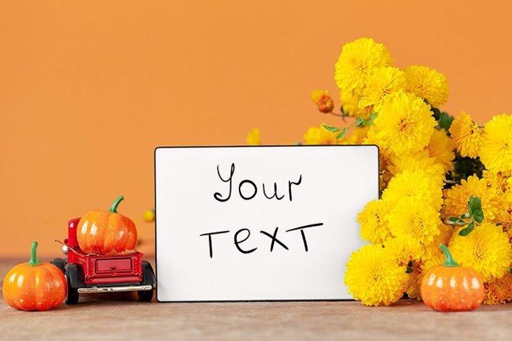 Yellow chrysanthemums flowers and empty blank lightbox