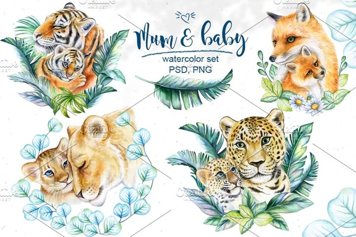 Mum & baby Animals