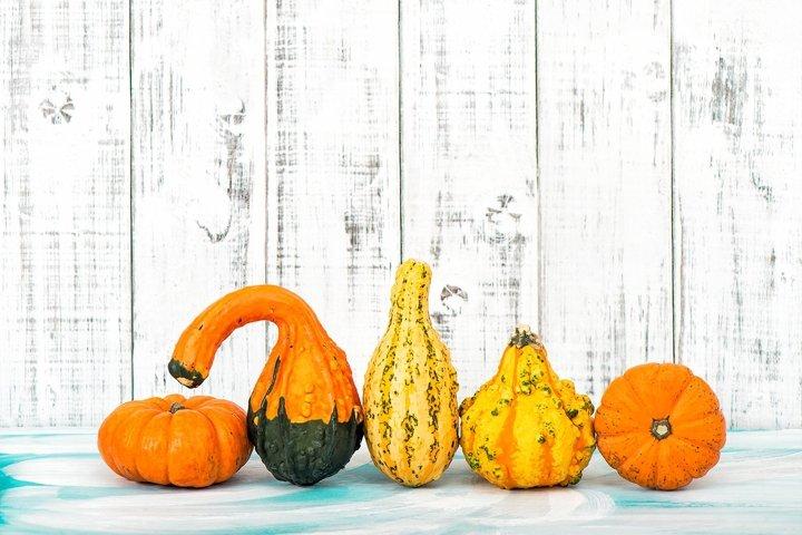 Pumpkin decoration Autumn. Thanksgiving