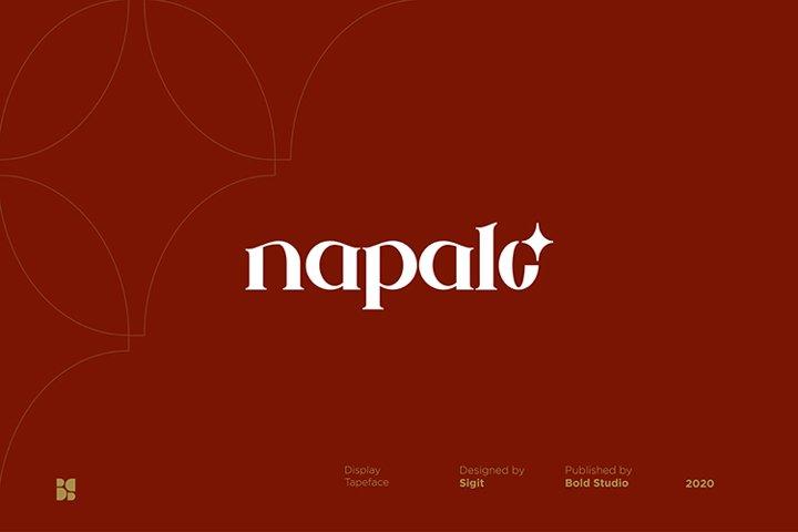 Napalo | Luxury Bold Serif