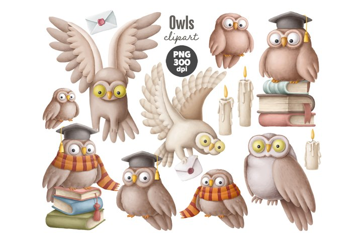 Set of cute owls clipart in PNG format, owl in Academic Cap