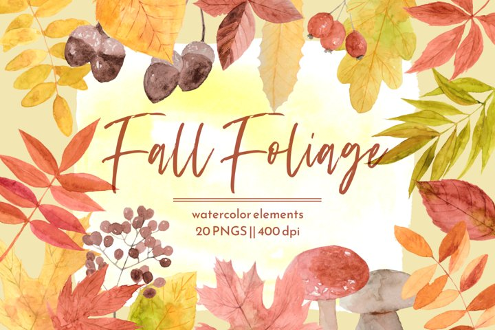 Fall Foliage Watercolor PNG Clipart Set