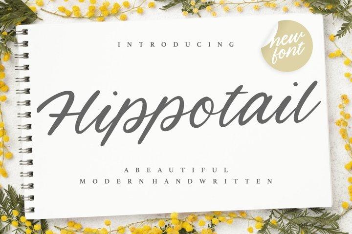 Hippotail Beautiful Modern Handwritten Font
