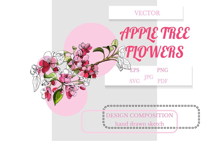 Hand drawn sketch of branch of apple tree flowers.
