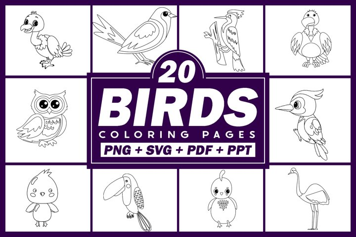 22 Birds Coloring Pages | SVG Vector Graphics | KDP Interior