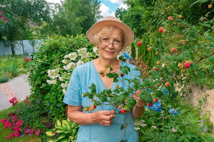 Woman gardener in glasses and a hat stands in the garden.