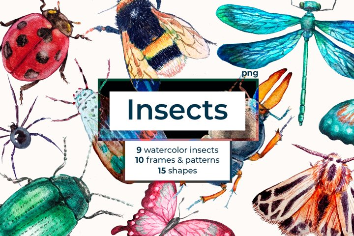 Watercolor Insect Cliparts