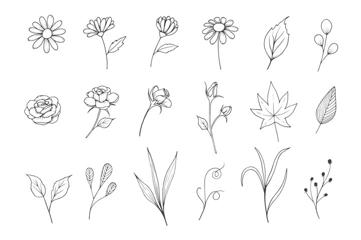 Flower Sketch Collection with Line Art Style