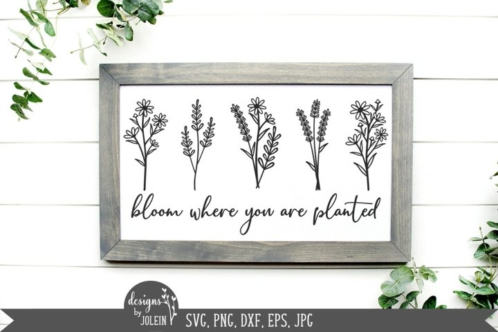 Bloom where you are planted SVG, PNG, DXF, EPS, Sublimation