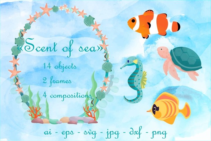 Scent of sea design elements and decorations