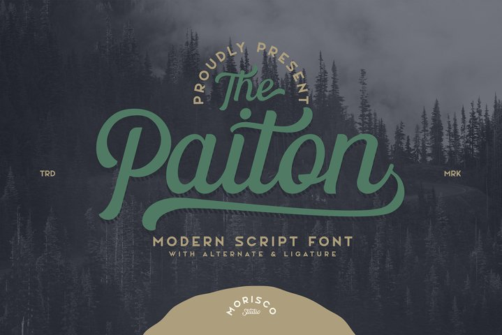 The Paiton -Modern Script Font