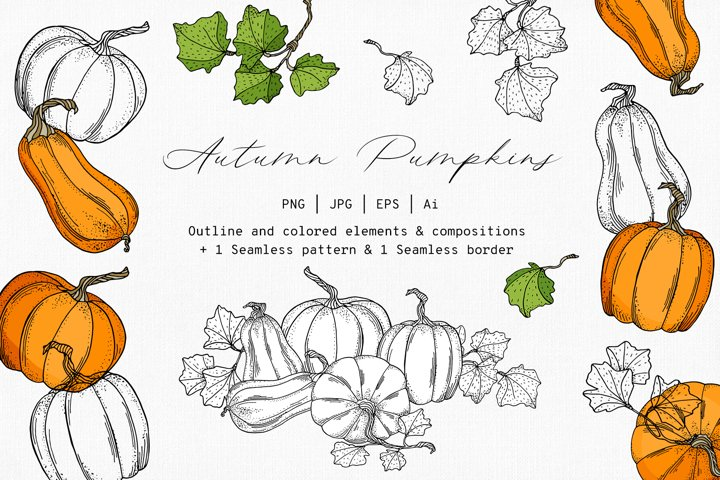 Autumn Pumpkins. Hand drawn vector clipart collection