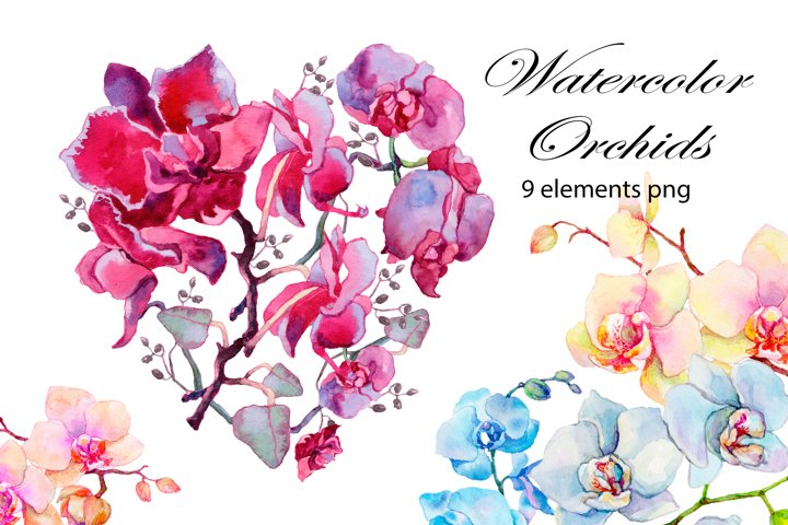 Orchids. Watercolor clipart collection.