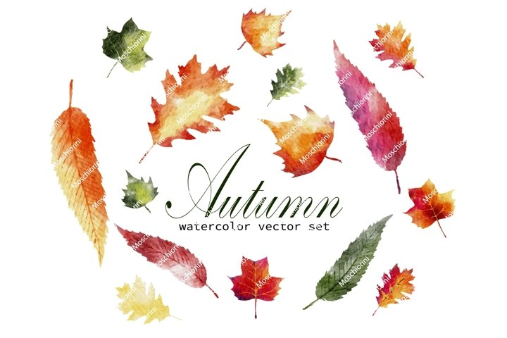 Set EPS of illustrations of watercolor autumn leaves