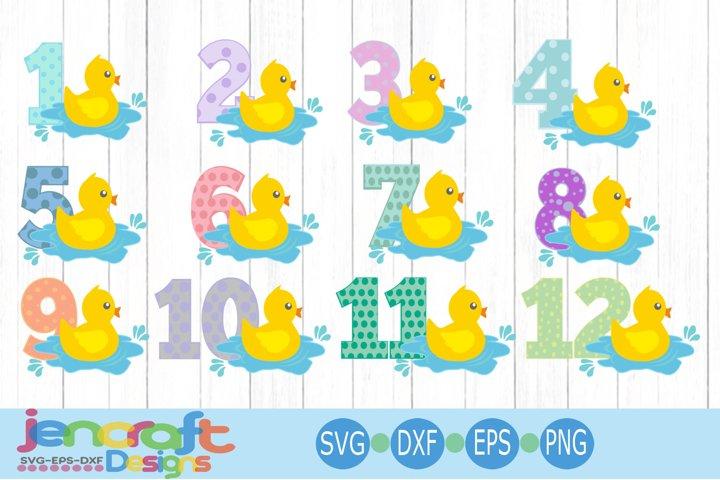 Baby monthly milestone svg,1-12 Months Duckling SVG