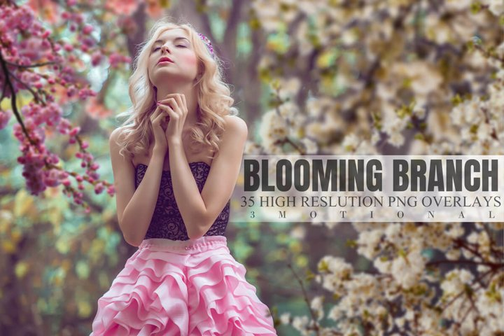 35 Blooming Branch Overlays