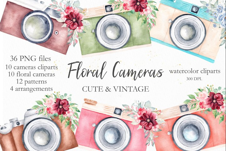 Watercolor Vintage Cameras Collection