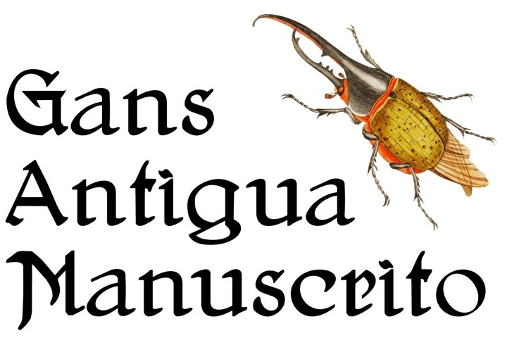Gans Antigua Manuscrito