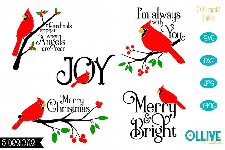 Christmas Cardinal Bundle SVG
