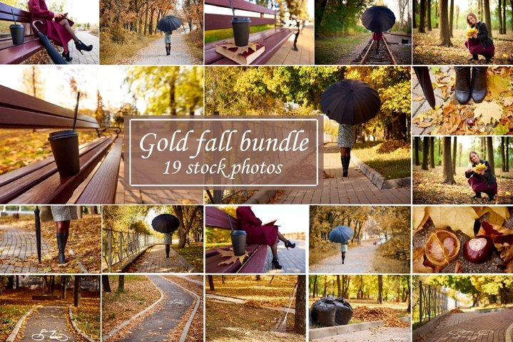 Gold fall bundle 19 stock photos.