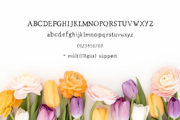 Spring Market - Rustic Serif Font - Free Font of The Week Design7