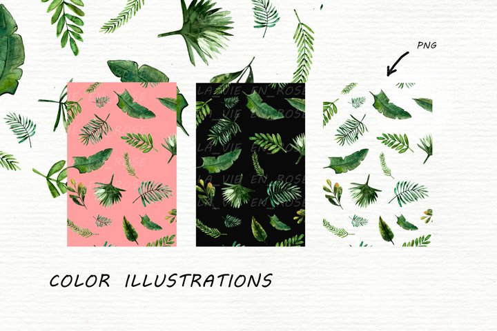Watercolor clipart with tropical leaves. example 5