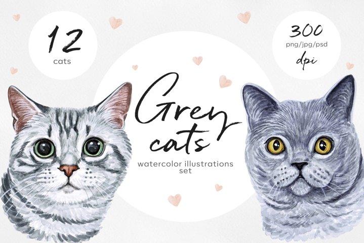 Grey cats. Watercolor cat illustrations. Cute 12 cats.